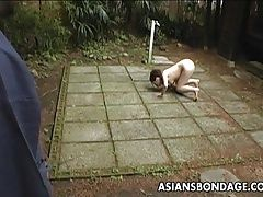 Asian slut loves to be treated...